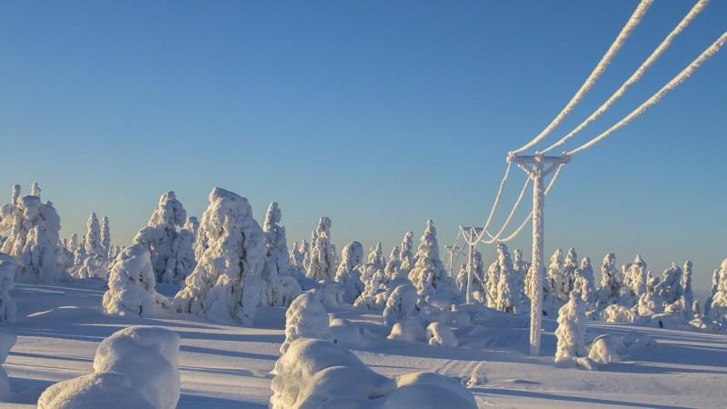 Finštinou se studenti prokousávají jako hlubokým sněhem.