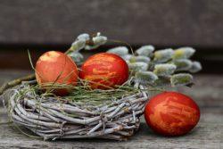 Tři vejce a něco o překládání, tlumočení nebo výuce jazyků.