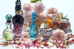 Parfémy a francouzština jdou dokonale k sobě.