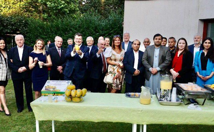 Pákistánské velvyslanectví ve svých prostorách v Praze pořádá Festival manga